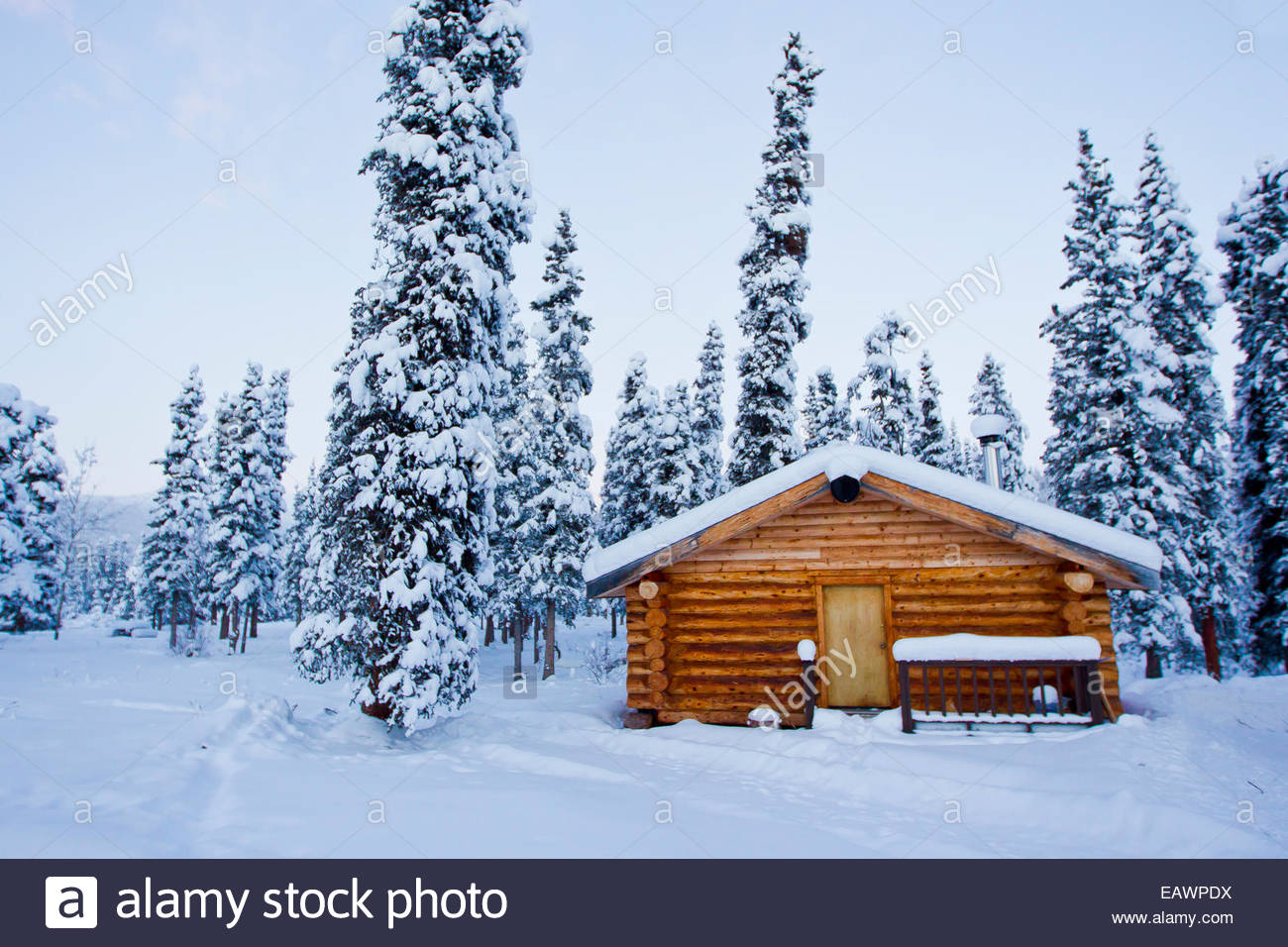 A cozy log cabin in snowy evergreen forest stock photo