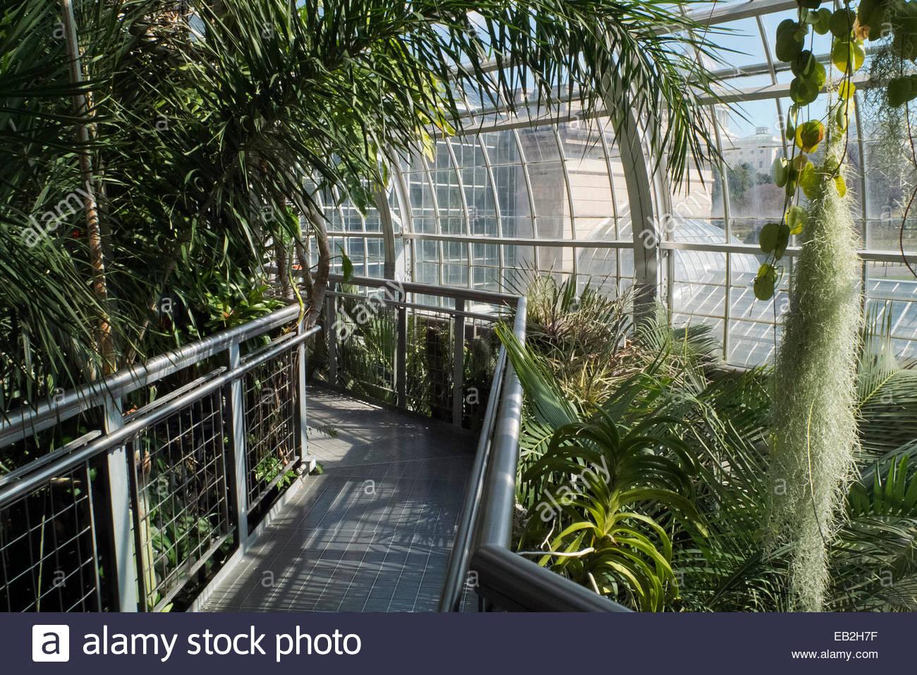 inside the us botanical garden in washington, dc stock photo