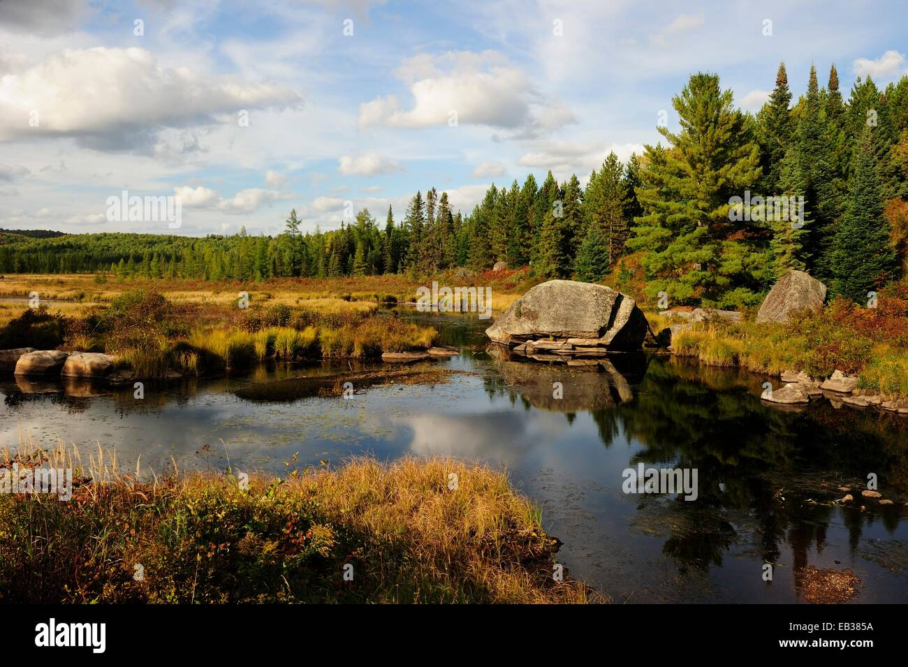 Typical moorlands of the Canadian Shield or Laurentian ...