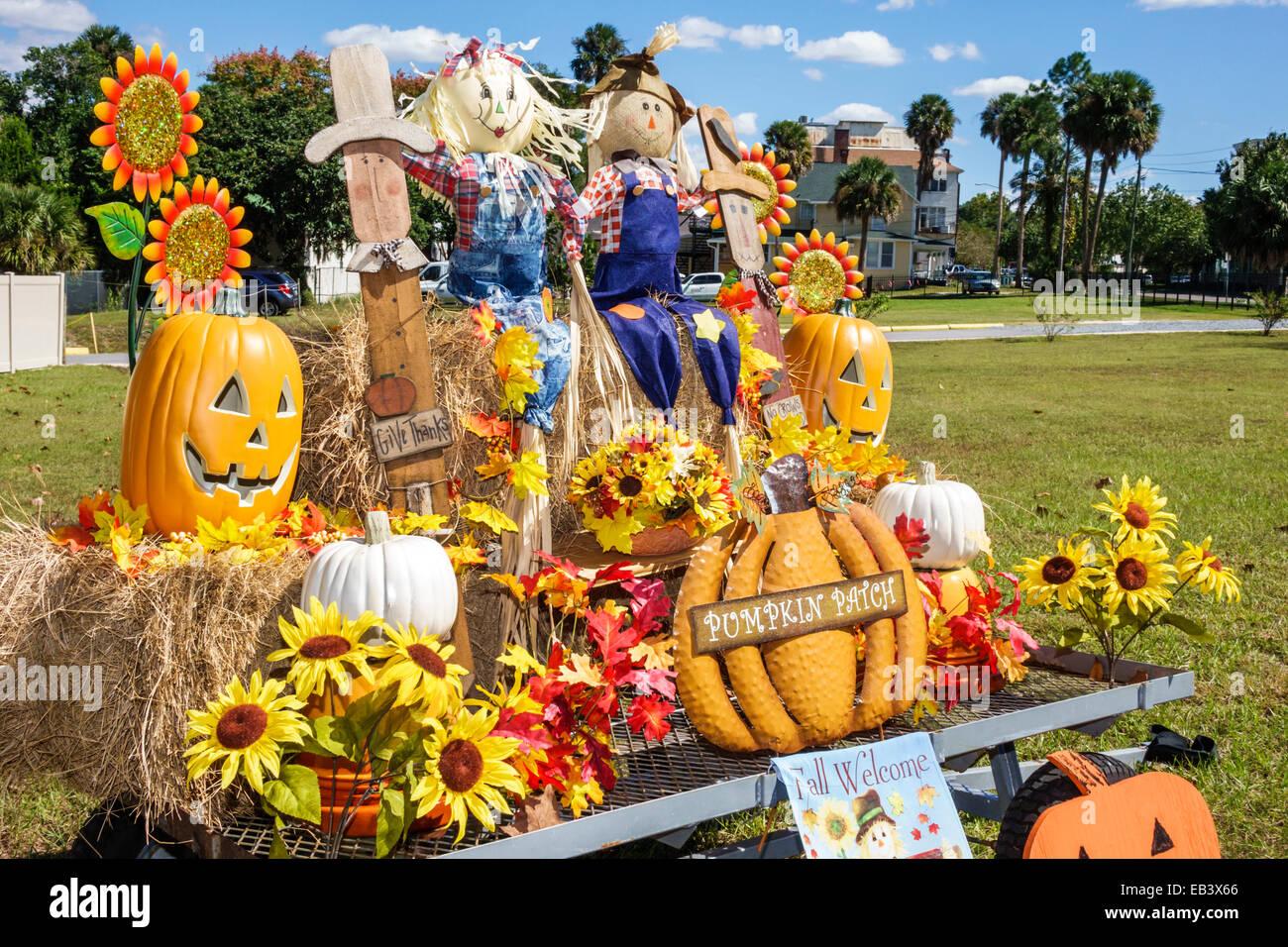 florida deland autumn fall display halloween pumpkin scarecrow