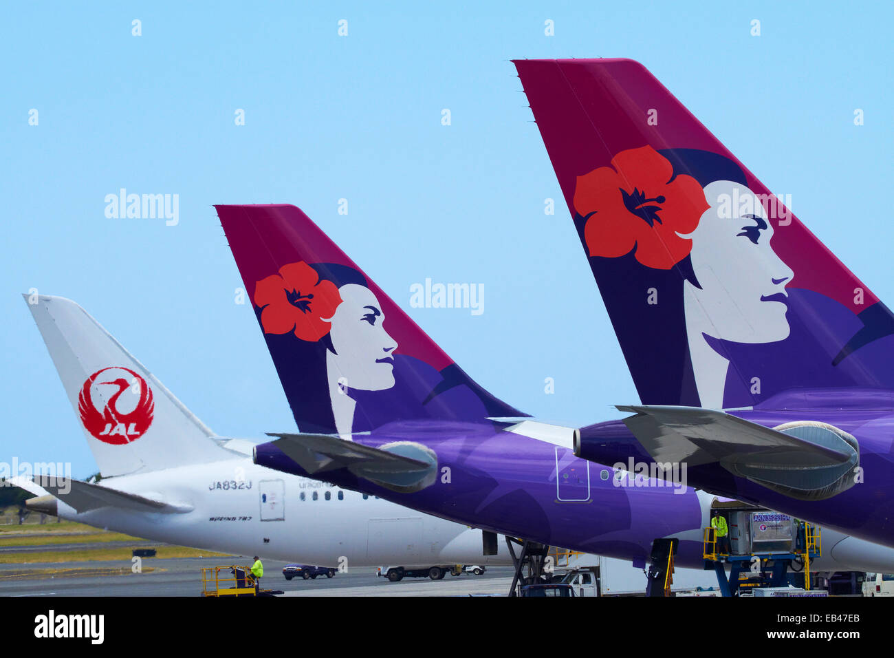 Jet tails stock photos jet tails stock images alamy tails of hawaiian airlines and japan airlines planes honolulu international airport honolulu oahu sciox Gallery