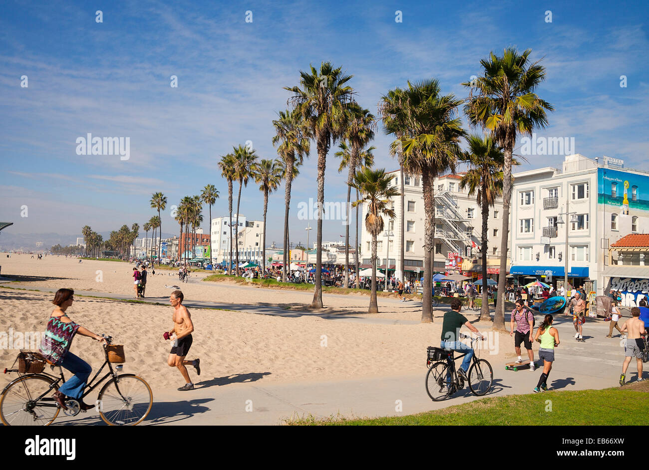 Tourists And Locals Riding Bikes Along The Famous Venice Beach
