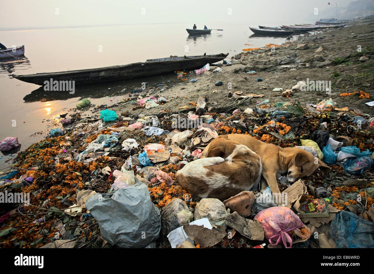 essay on pollution control in india Among india's most pressing environmental problems are land damage, water shortages, and air and water pollution during 1985, deforestation, which, especially in the himalaya watershed areas.