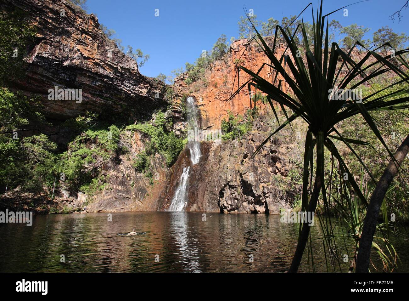 Sandy creek falls in litchfield national park australia for Sandy creek