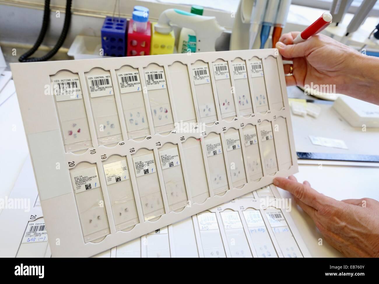 how to become an anatomical pathology technician