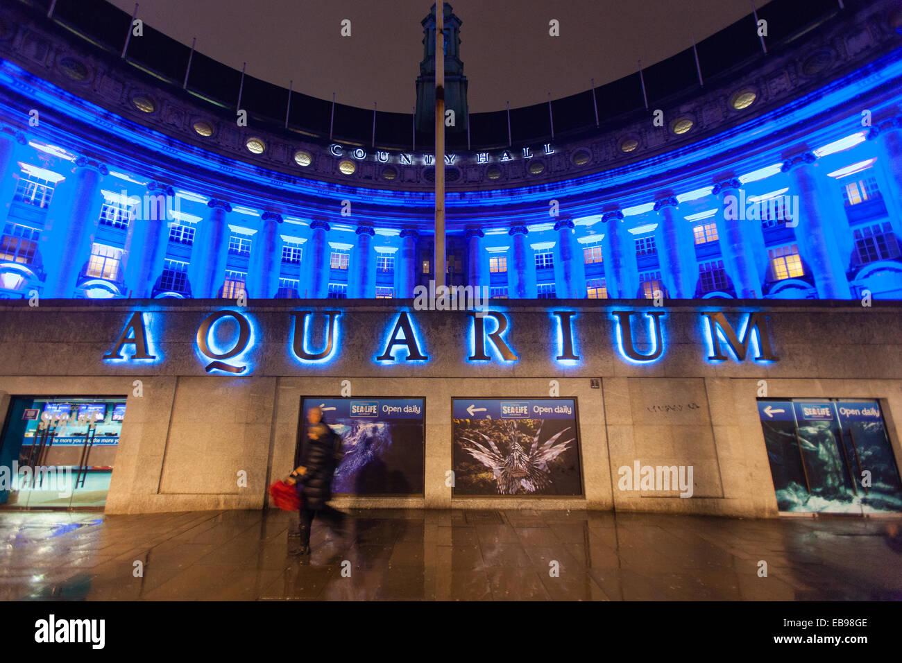 London Aquarium At Night Images
