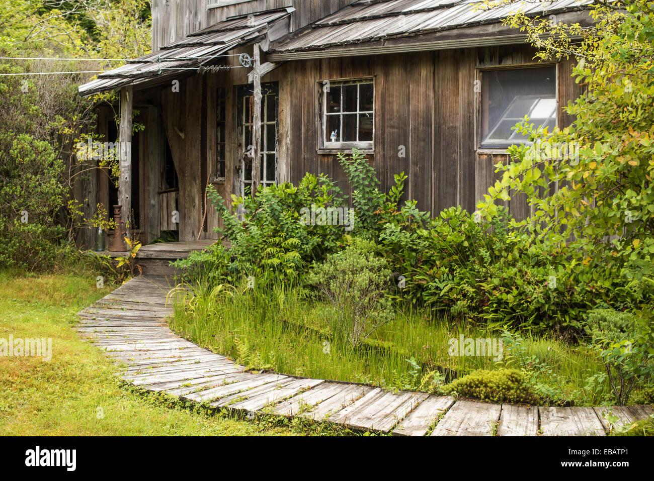 A Cabin At Cougar Annieu0027s Garden, Hesquiat Peninsula, Vancouver Island, BC,  Canada