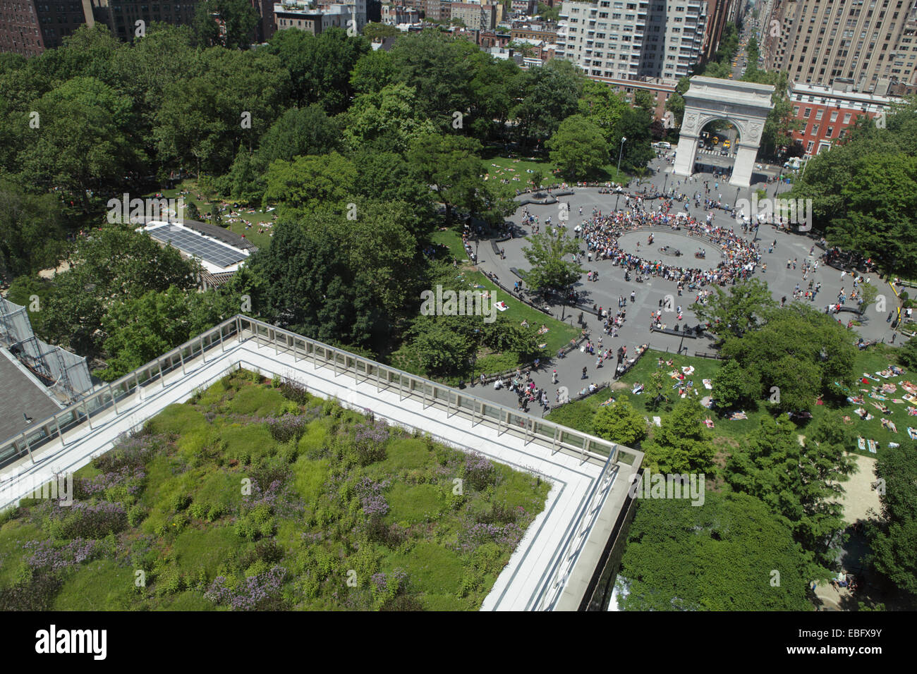 Green Roof On A New York University Building Above Washington Square Park  NYC