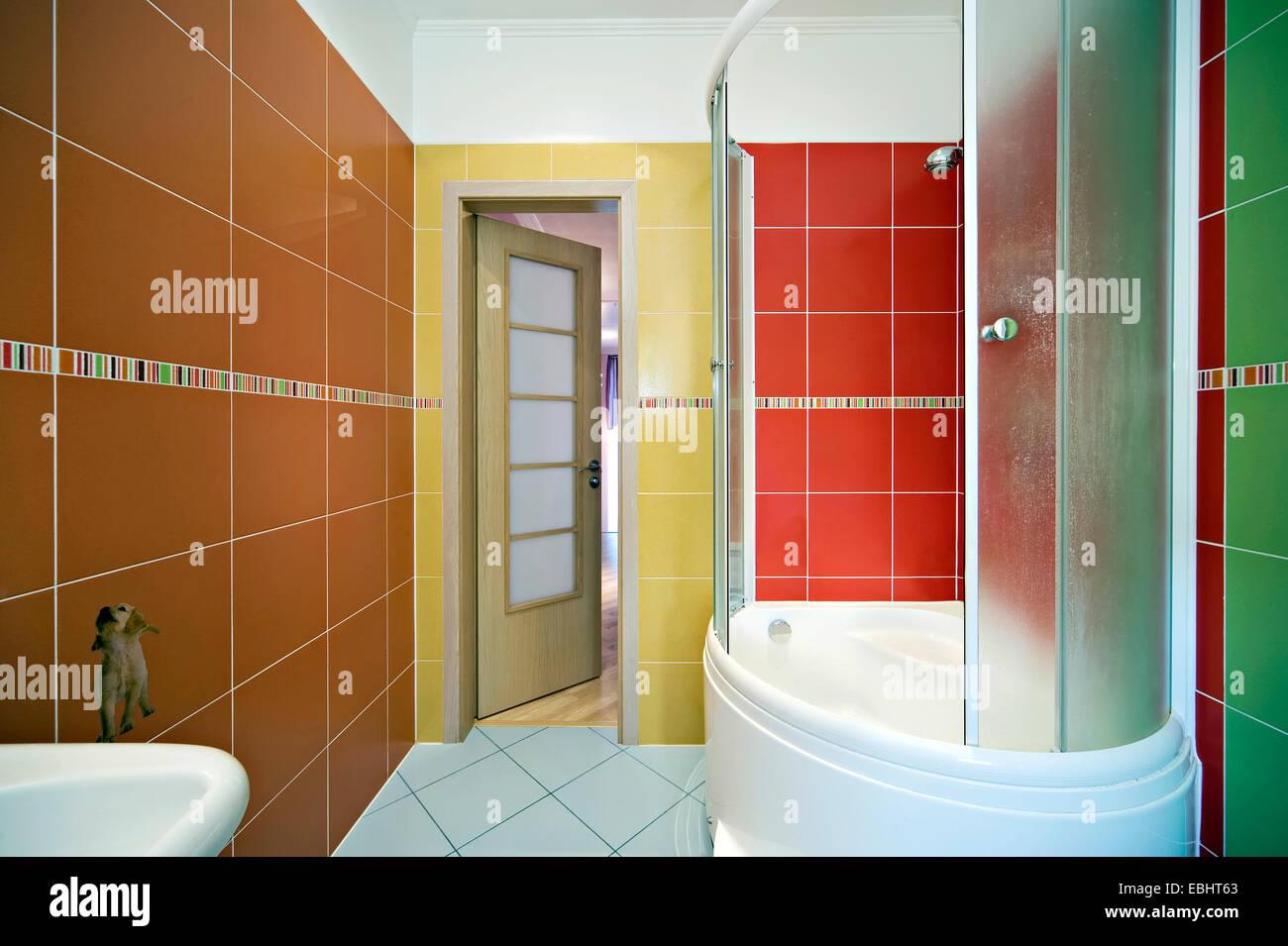 Modern Bathroom Interior Shower Cabin Mirror Sink Vertical Indoors Home Bathtub Contemporary Luxury Floor