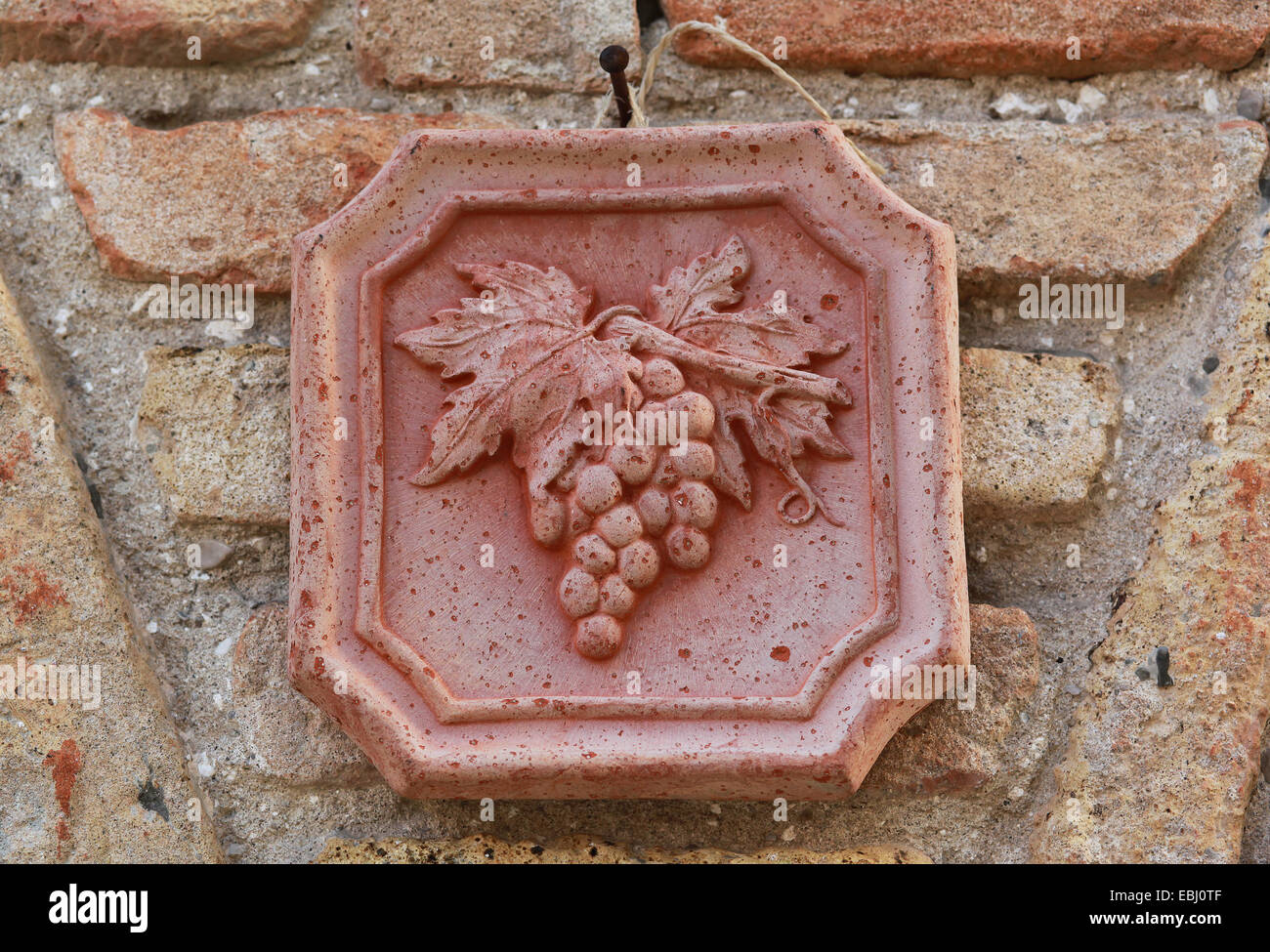 Decorative ceramic tile with grape vine fixed on a brick wall decorative ceramic tile with grape vine fixed on a brick wall outside a wine bar shop in italy europe dailygadgetfo Gallery