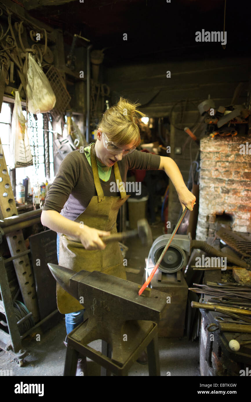Blue apron ebt