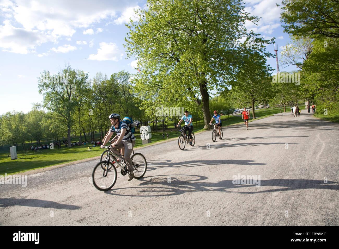 Biking Mont Royal Park Montreal Quebec Provence Canada Stock