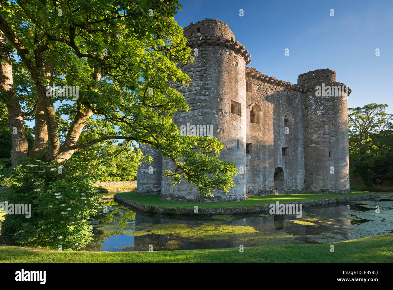 Nunney Castle And Moat In The Village Of Nunney Somerset