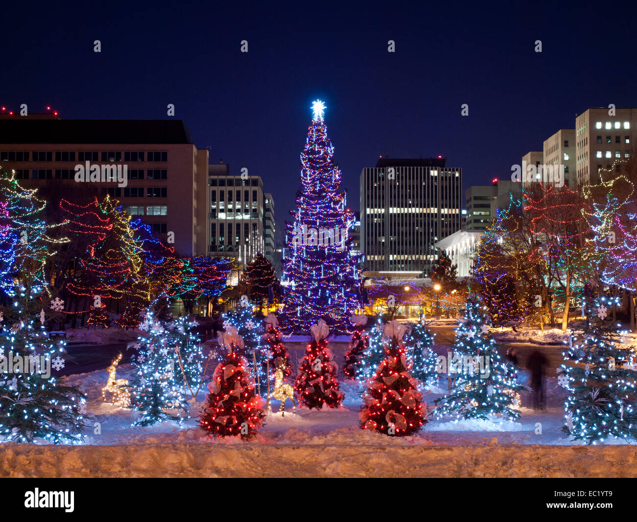 The main Christmas tree and small Christmas trees at the ...