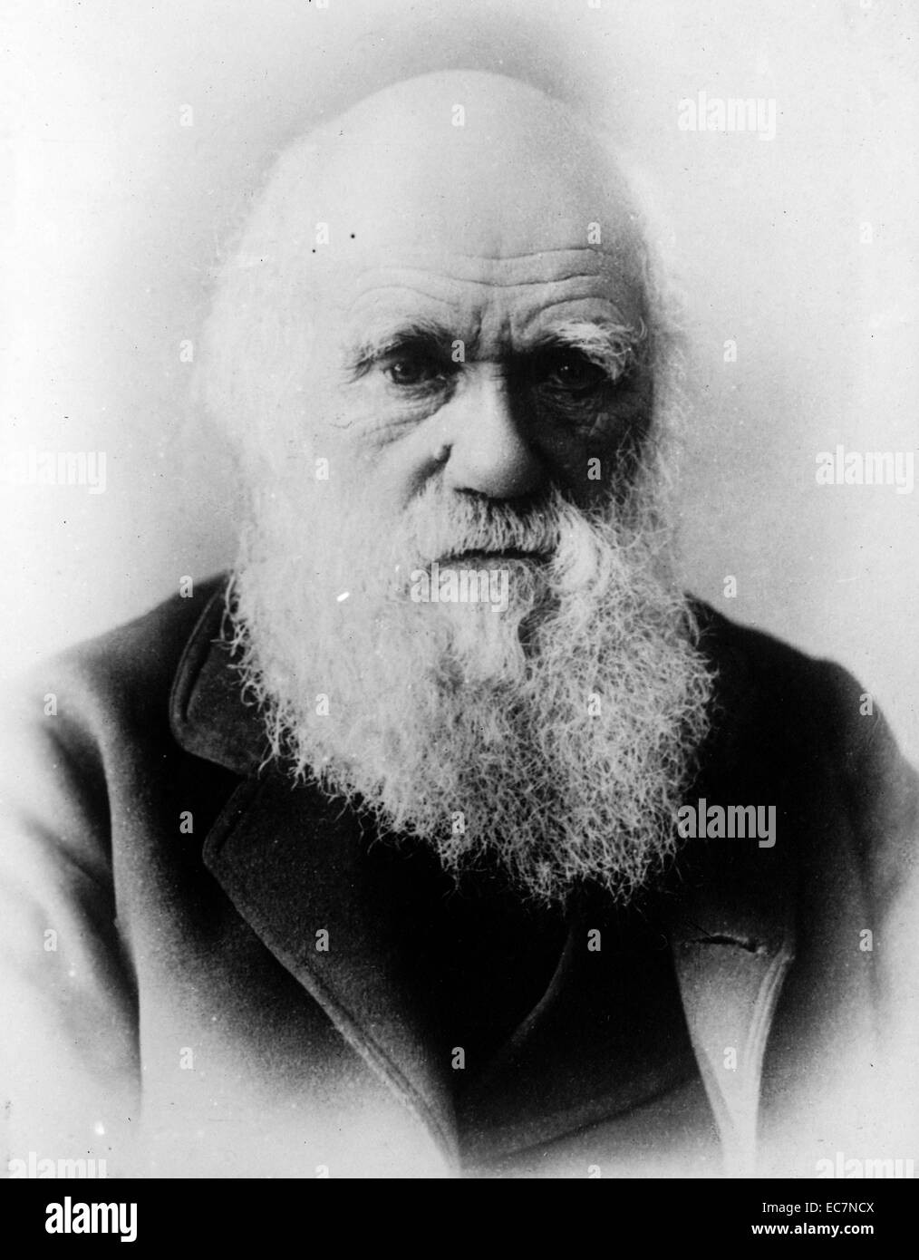 a biography of charles darwin an english naturalist Charles darwin was an english naturalist who studied variation in plants and animals during a five-year voyage around the world in the 19th century.