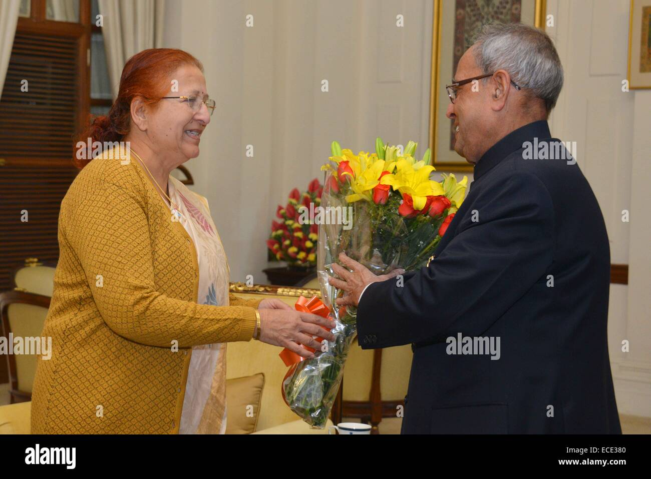 New delhi india 11th dec 2014 the president of india shri new delhi india 11th dec 2014 the president of india shri pranab mukherjee receives greetings from vvips dignitaries on the occasion of his birthday kristyandbryce Choice Image
