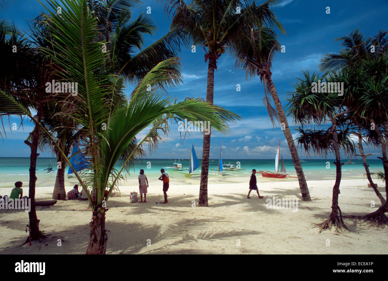 Landscape With Palm Trees Bankas In White Beach Boracay Philippines Sand Island Phili