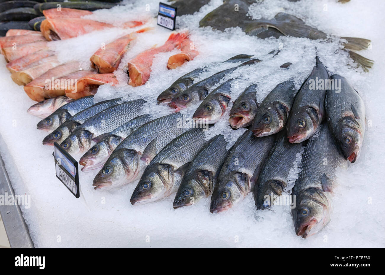 Raw fish ready for sale in the supermarket magnit one of for Fish meal for sale