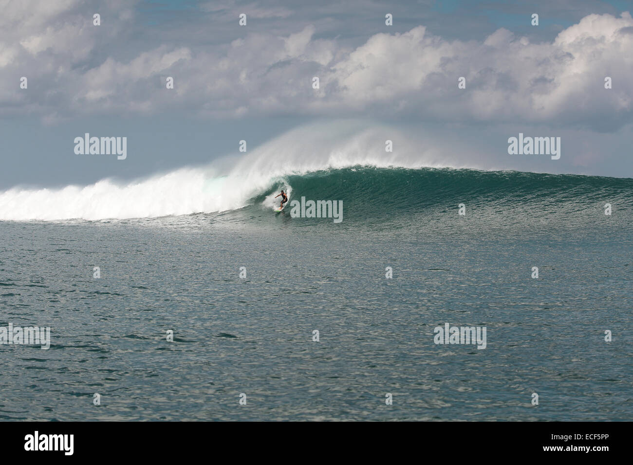 Rote Island Indonesia  City pictures : Surfing A Large Wave At Nembrala On Rote Island, Indonesia Stock Photo ...