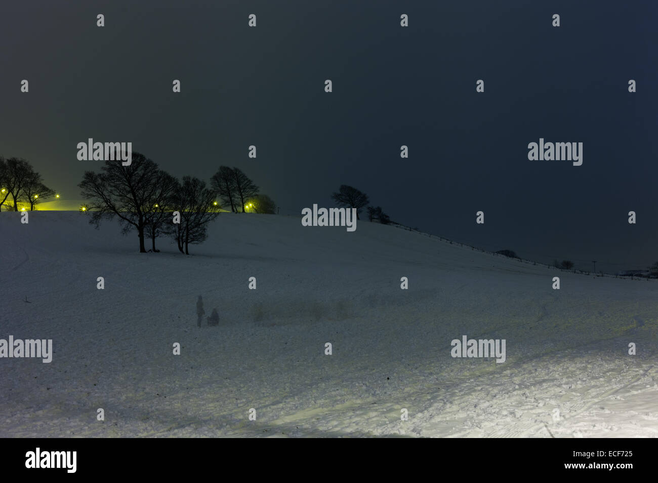 sledging-on-a-snow-covered-hill-not-snow