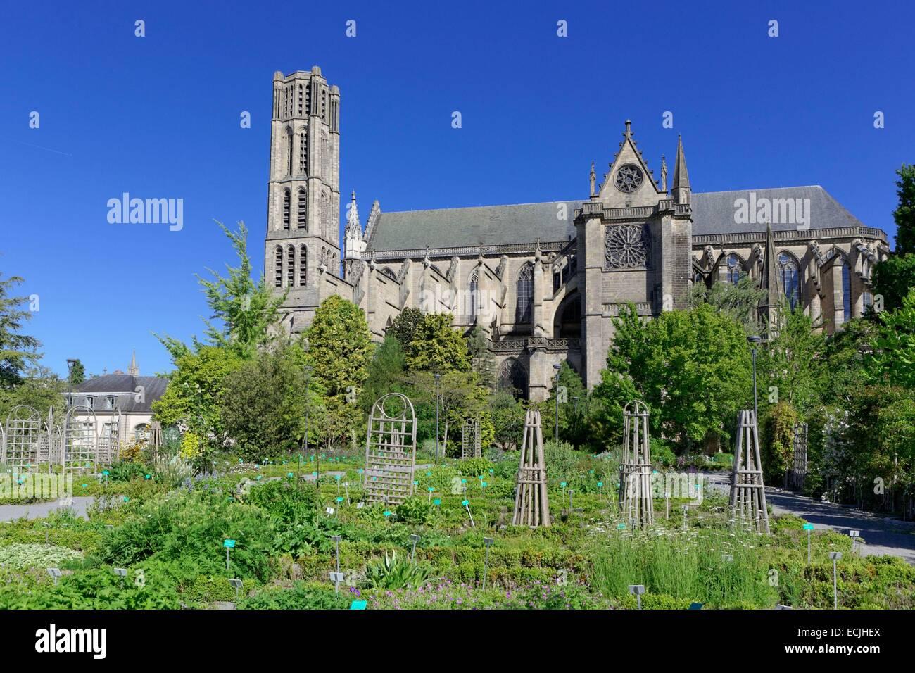 France haute vienne limoges cathedral of saint etienne jardin stock photo royalty free - Jardin mediterraneen limoges ...