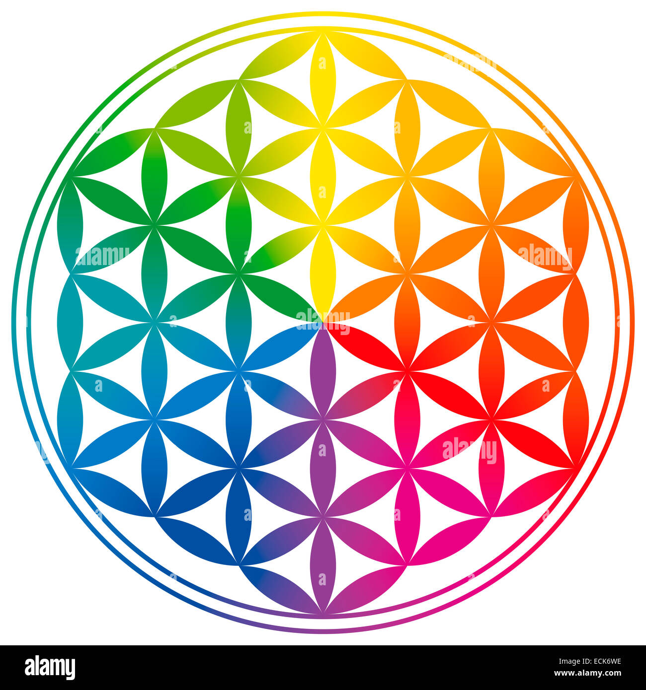 symbolism of life It is believed that there is a secret symbol embedded within the flower of life this symbol is said to hold the most important and most sacred patterns of the universe and is the harbinger of all life and existence—from molecules and atoms to planets and galaxies.