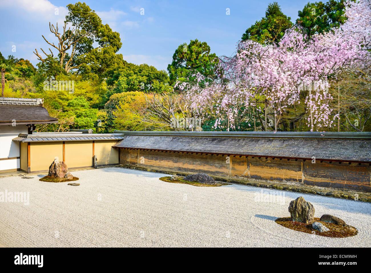 kyoto japan at ryoan ji temple zen garden in the spring season