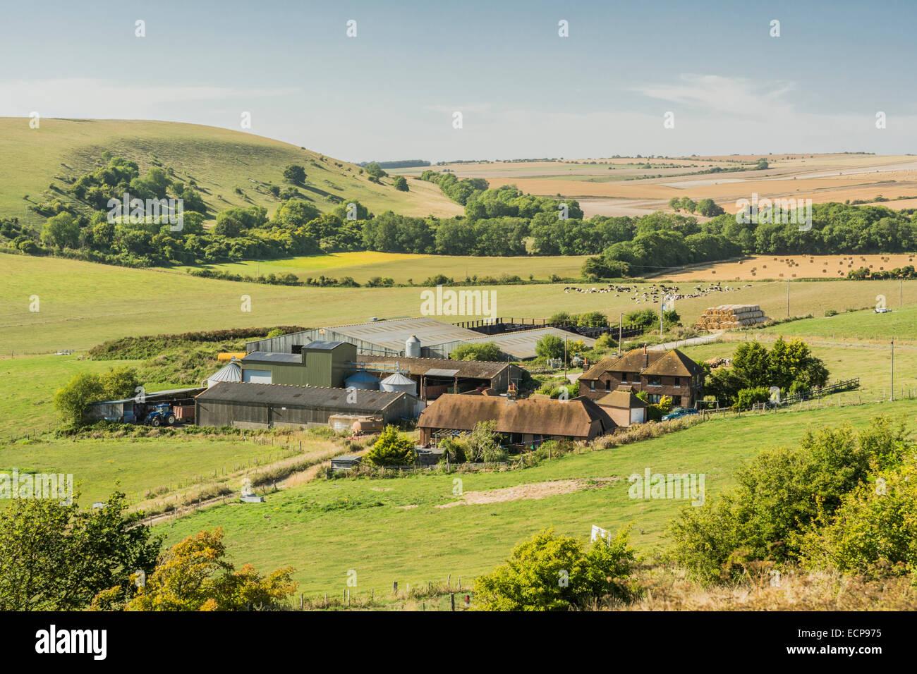 Image Result For Al Jannat Classic Farmhouse
