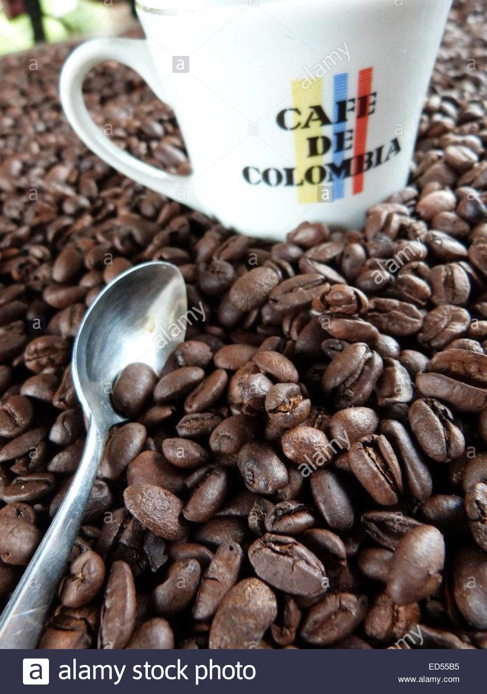 Colombian Coffee beans. Zona Cafetera, Pereira, Colombia Stock Photo, Royalty Free Image: 76945993