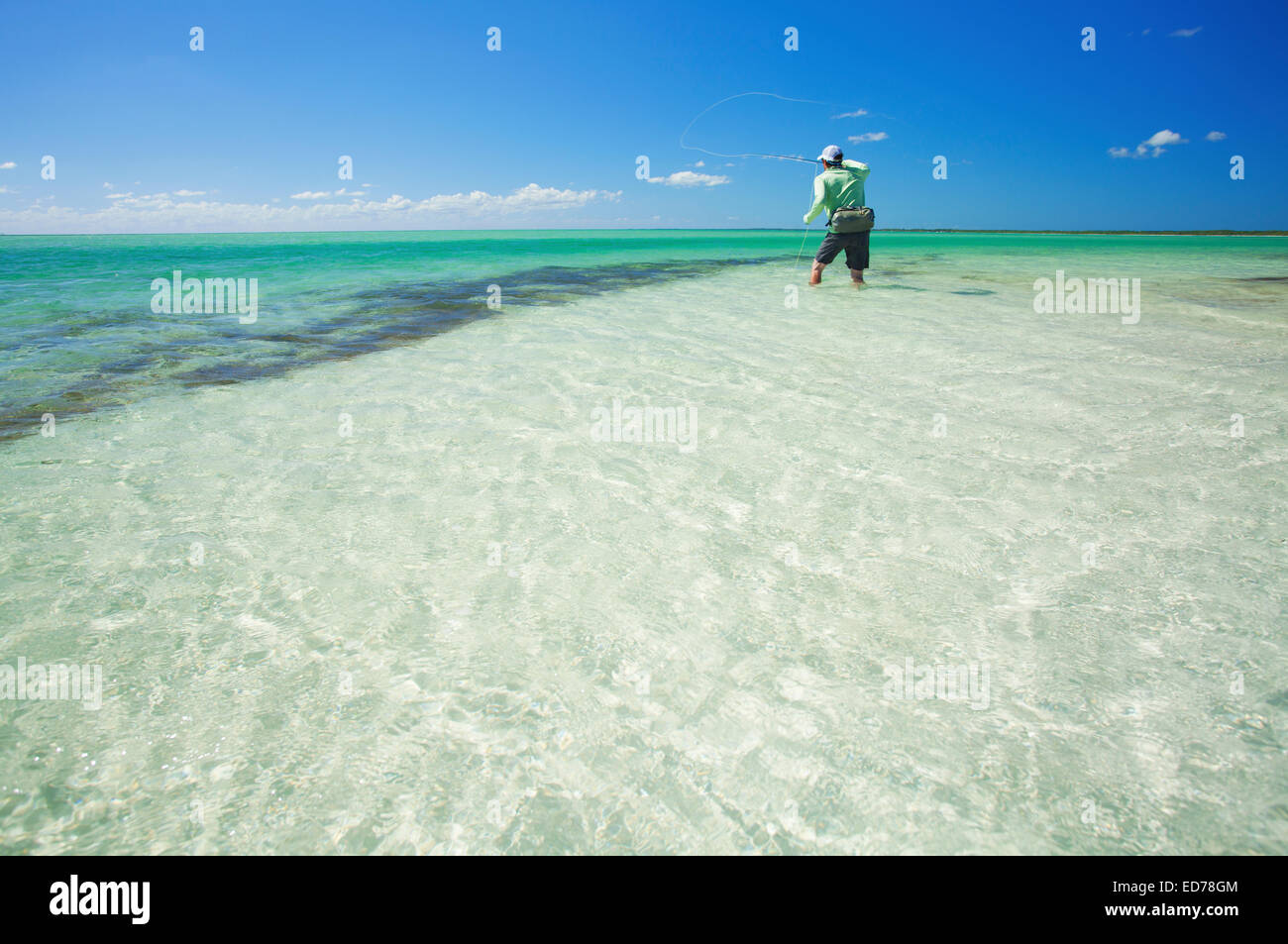 Saltwater fly fishing for bonefish on the island of abaco for Fishing nassau bahamas
