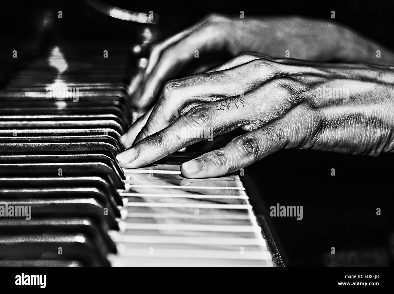 black and white image of piano hands stock photo royalty