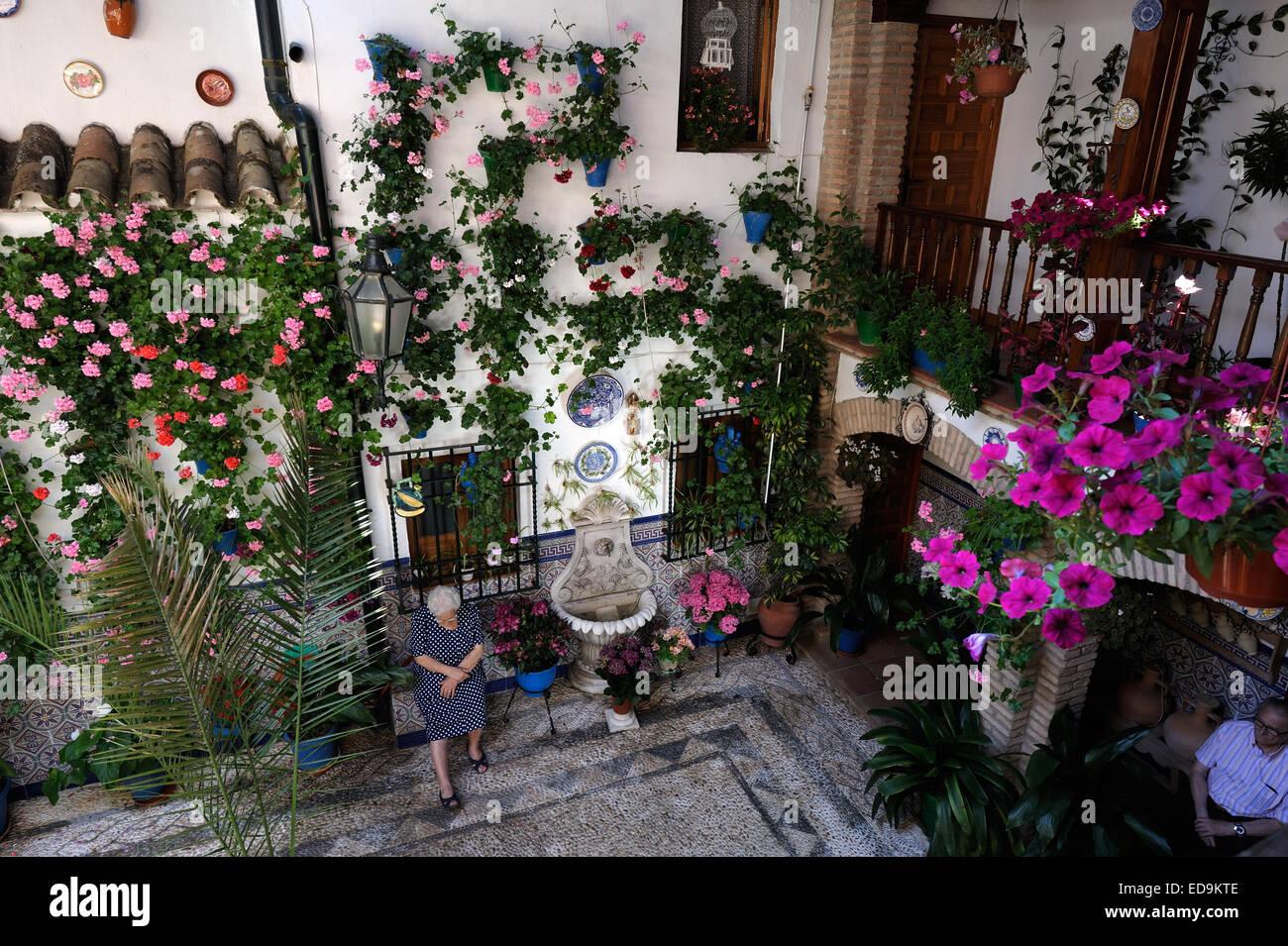 Stock Photo   Courtyard During The Festival Of The Patios (el Festival De Los  Patios Cordobeses), Cordoba, Spain