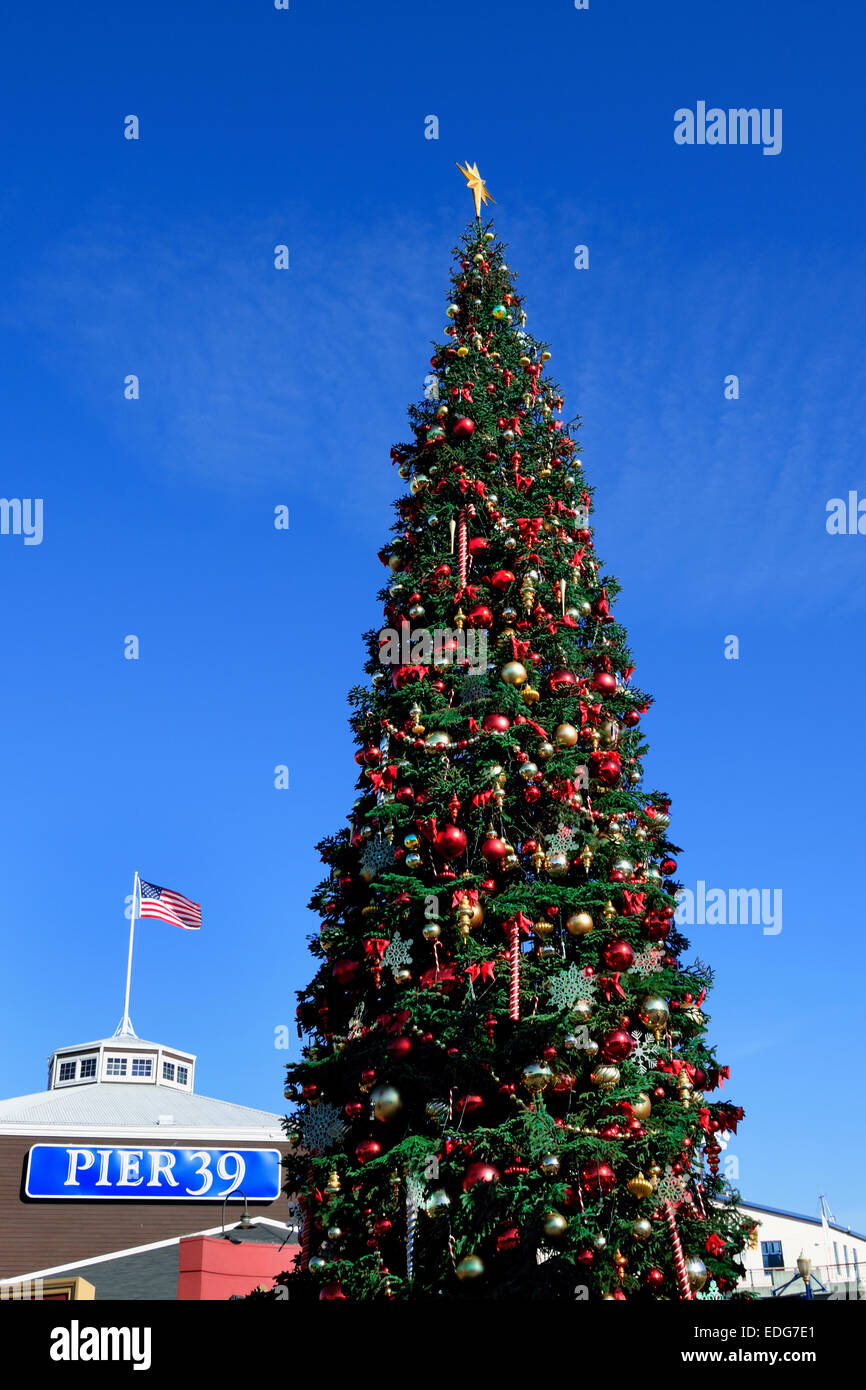 Festive Christmas Tree At Pier 39 Fishermans Wharf Embarcadero San  Francisco California Usa