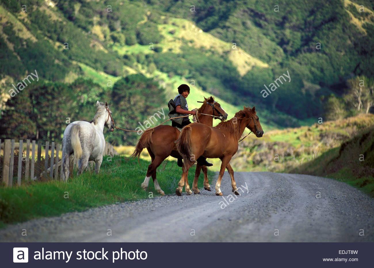 young-maori-on-horse-te-araroa-east-cape