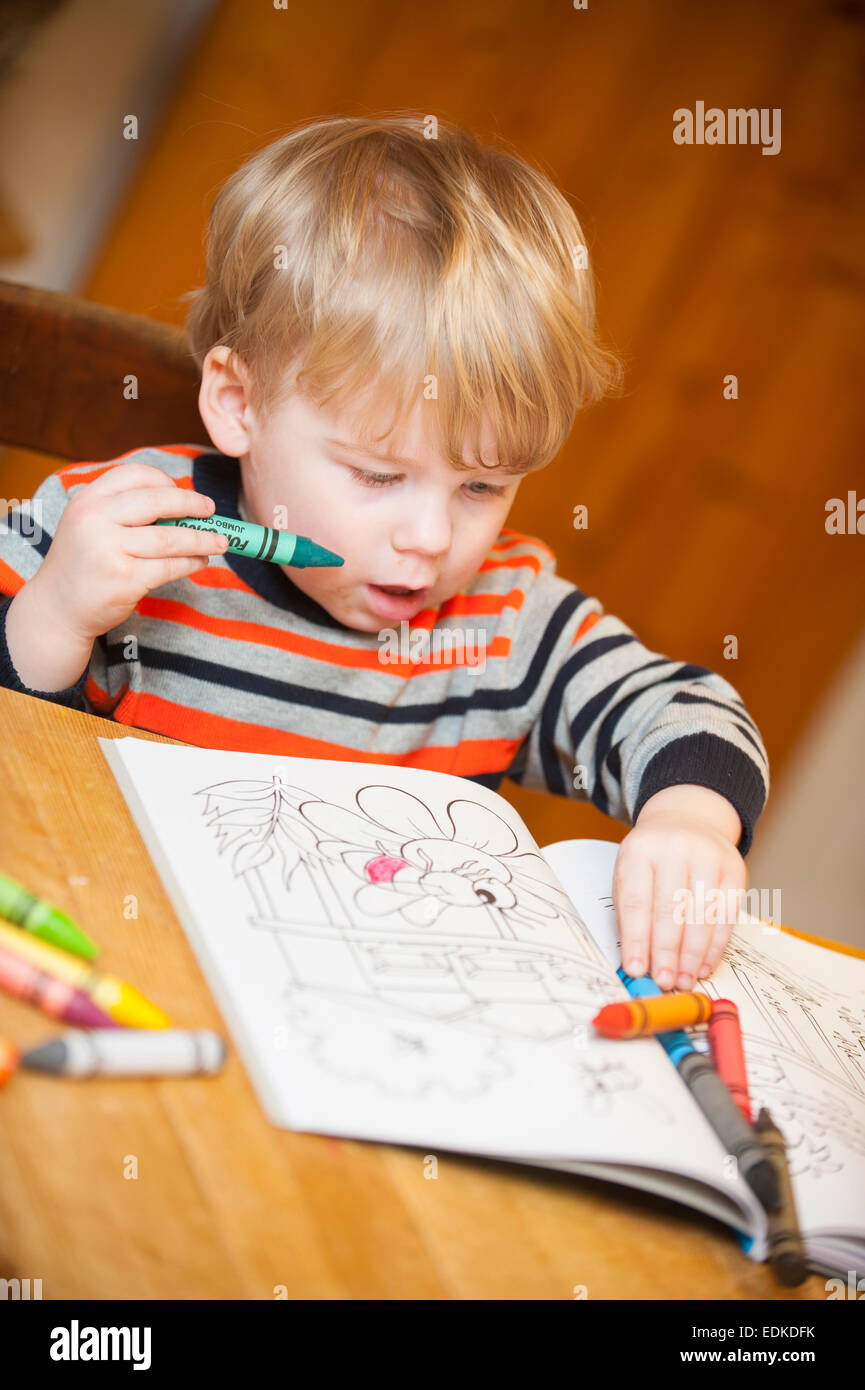 A two year old child colouring in a colouring book Stock Photo