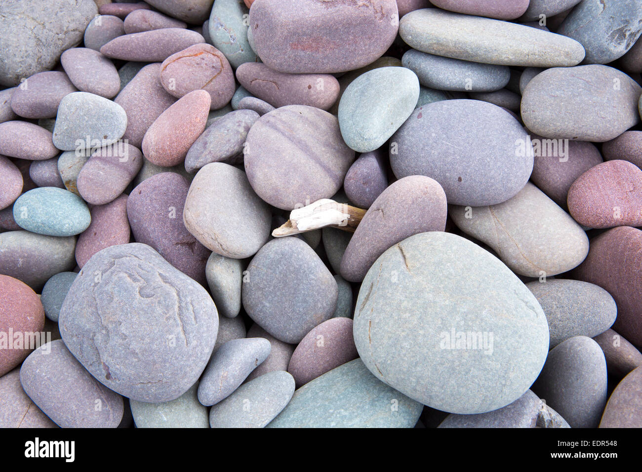 Pastel Shades pebbles in pastel shades of pink, purple, grey and blue, on a