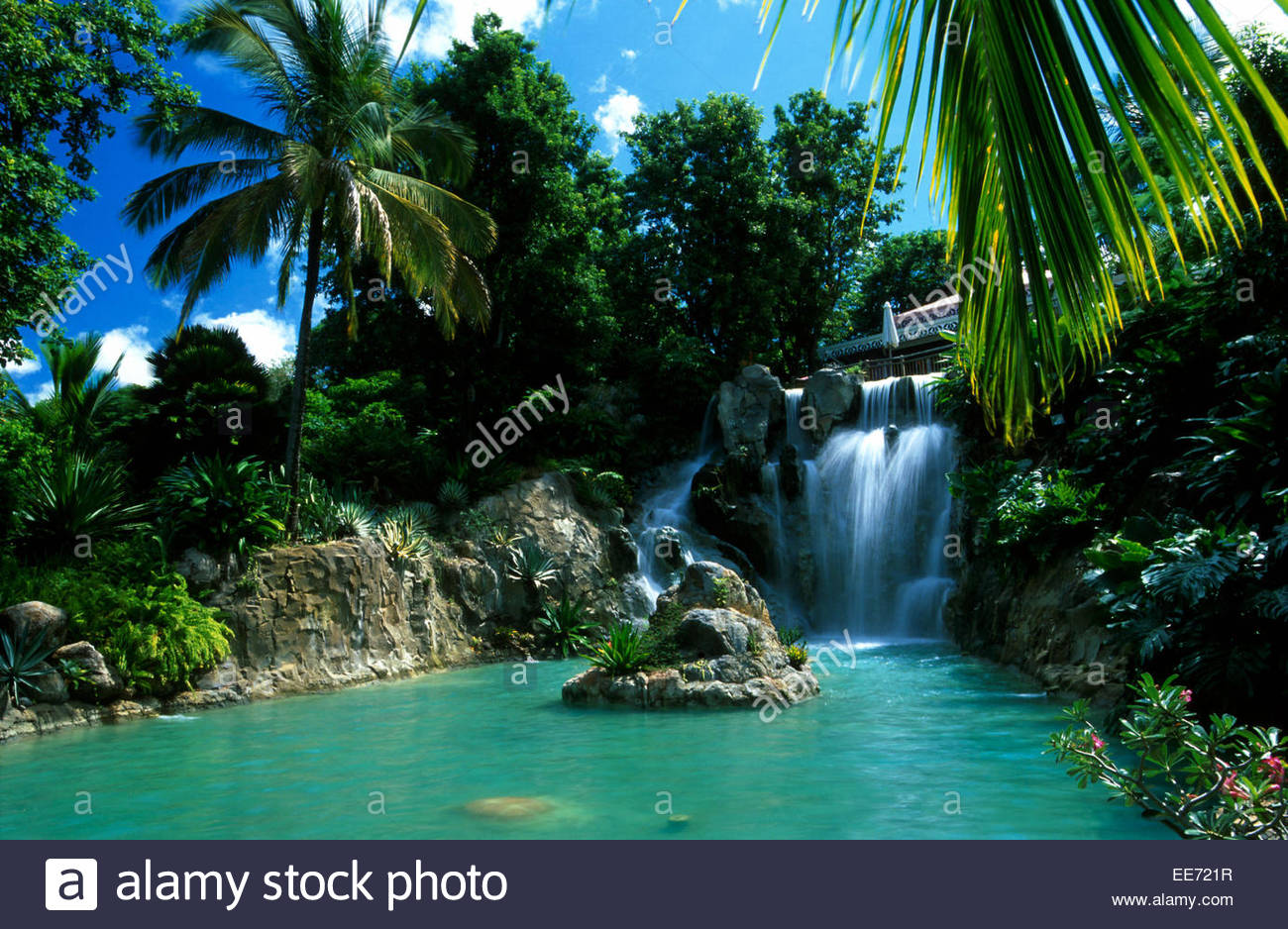 Guadeloupe basse terre botanical garden of deshaies - Jardin botanique guadeloupe basse terre ...
