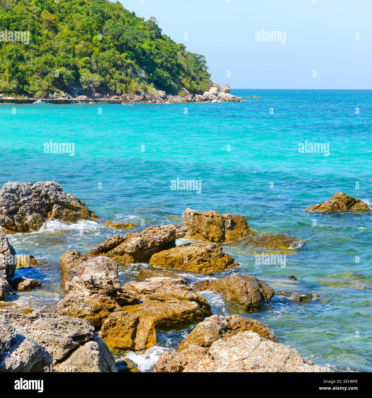 Island Beach Scenes: Nature Scene Tropical Beach And Sea In Koh Larn Island