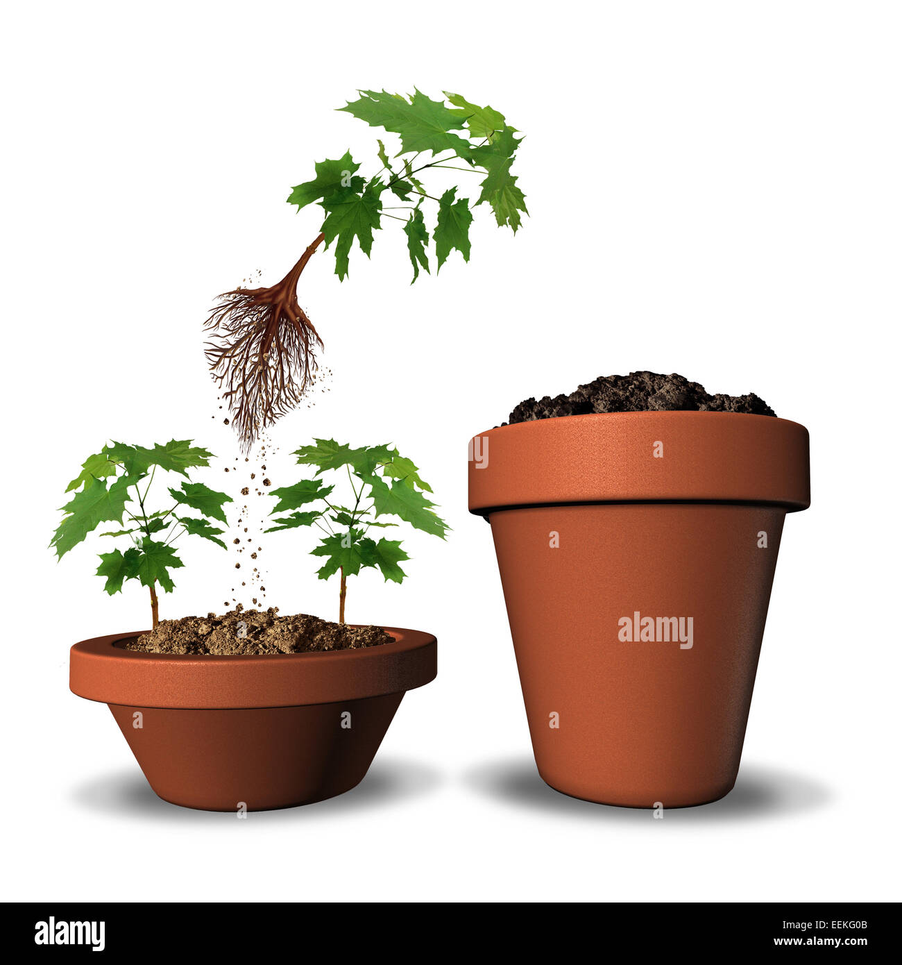 ambition concept and career promotion from an overcrowded market ambition concept and career promotion from an overcrowded market as a flying sapling tree jumping out