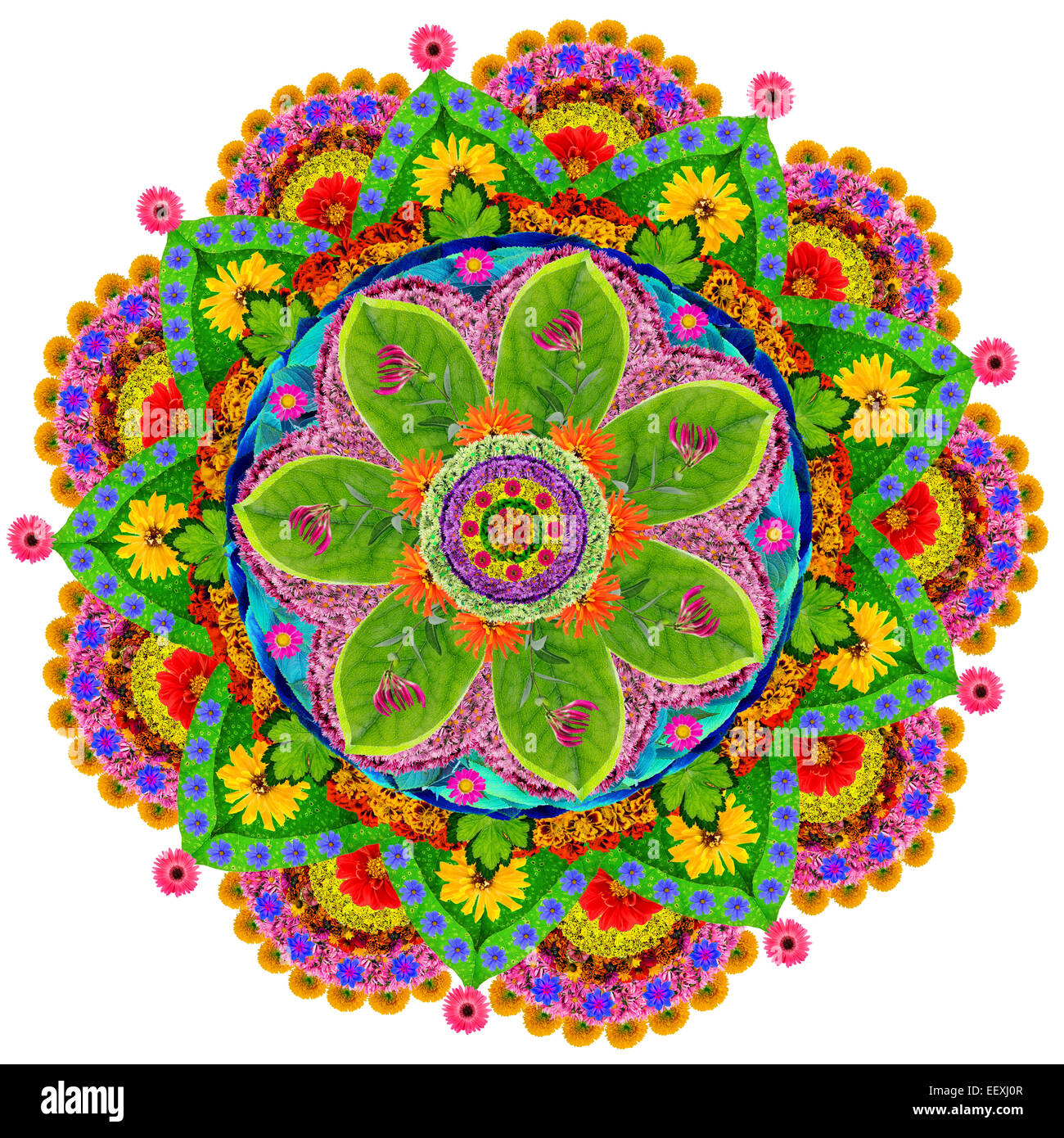 Mandala spiritual and ritual symbol in buddhismmade from summer mandala spiritual and ritual symbol in buddhismmade from summer flowers isolated abstract collage biocorpaavc Images