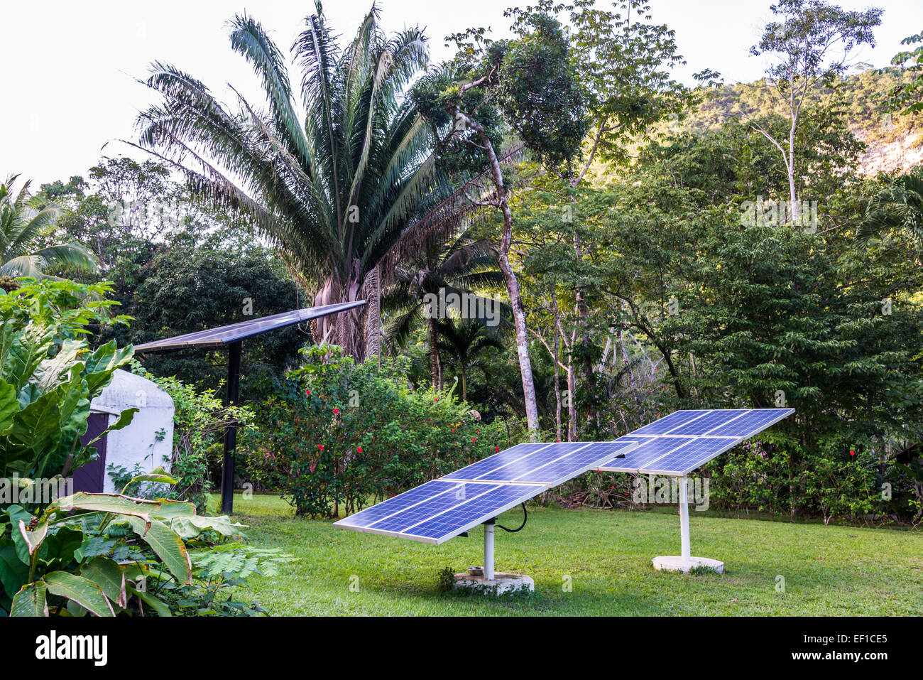 Solar Panels Generating Electricity In A Backyard. Belize, Central America
