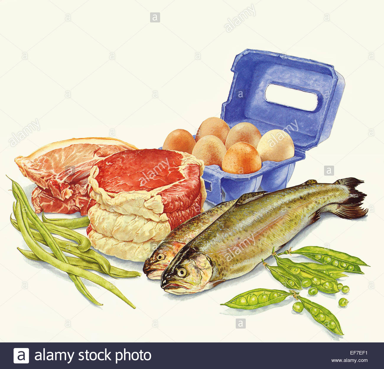 Food with protein meat fish eggs and green beans stock for Protein in fish