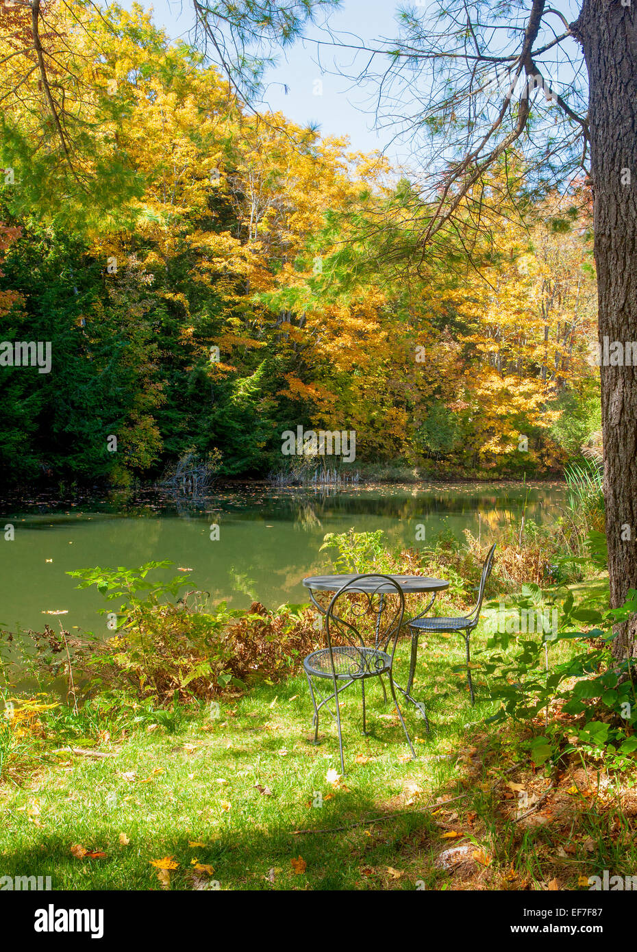 Awesome Black Wrought Iron Picnic Table And Chairs In A Woodland Setting Beside A  Small Pond In Vermont, United States Of America.
