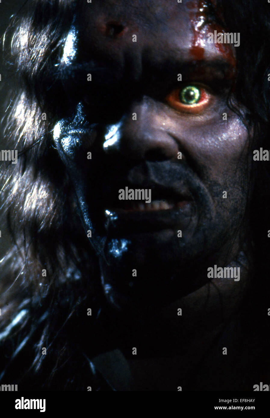 WEREWOLF THE HOWLING (1981 Stock Photo, Royalty Free Image ...