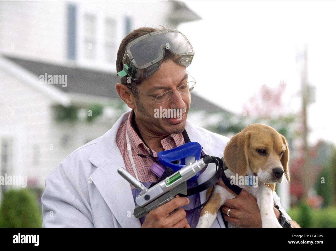 Jeff Goldblum Cats And Dogs