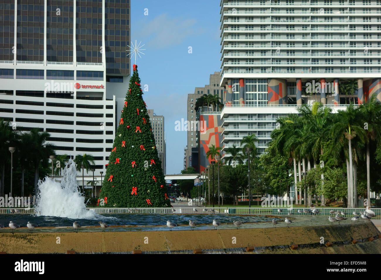 Christmas tree in the Bayfront Park, Miami downtown ...