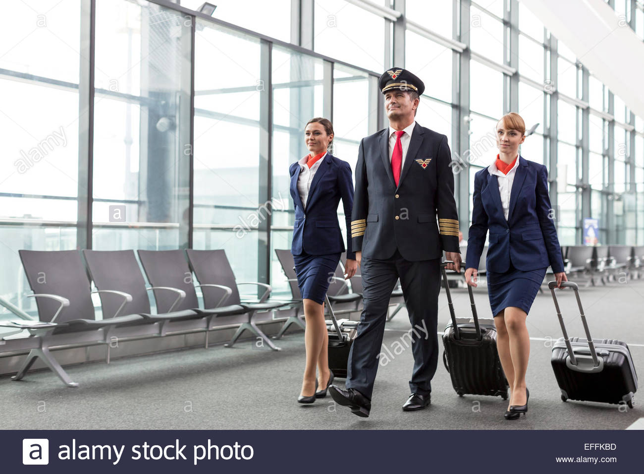 how to become a flight attendant in canada