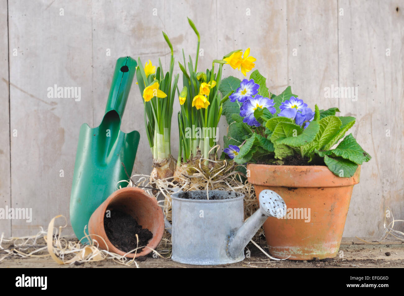 Stock Photo   Spring Flowerpots With Gardening Accessories On Wooden  Background