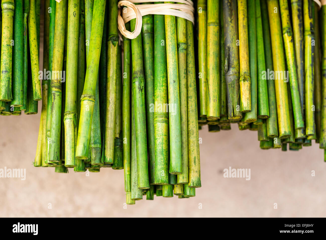 Green bamboo sticks for garden art stock photo royalty