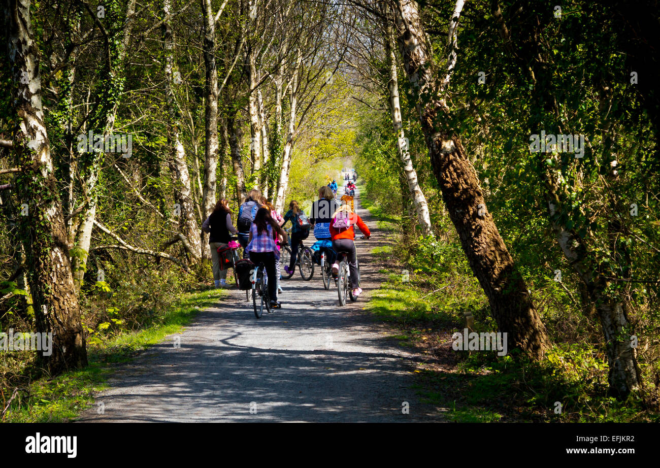 cyclists-on-mawddach-trail-which-runs-on